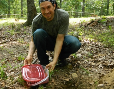 Planting the Placenta